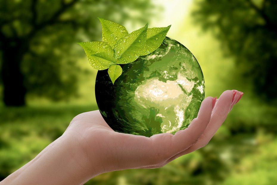 Nachhaltig leben